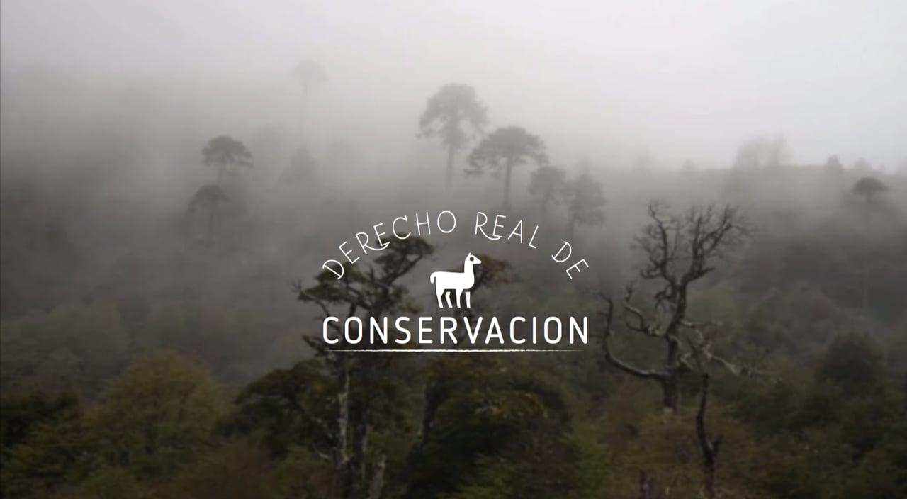 Entrevista a Francisco Solis sobre el Derecho Real de Conservación