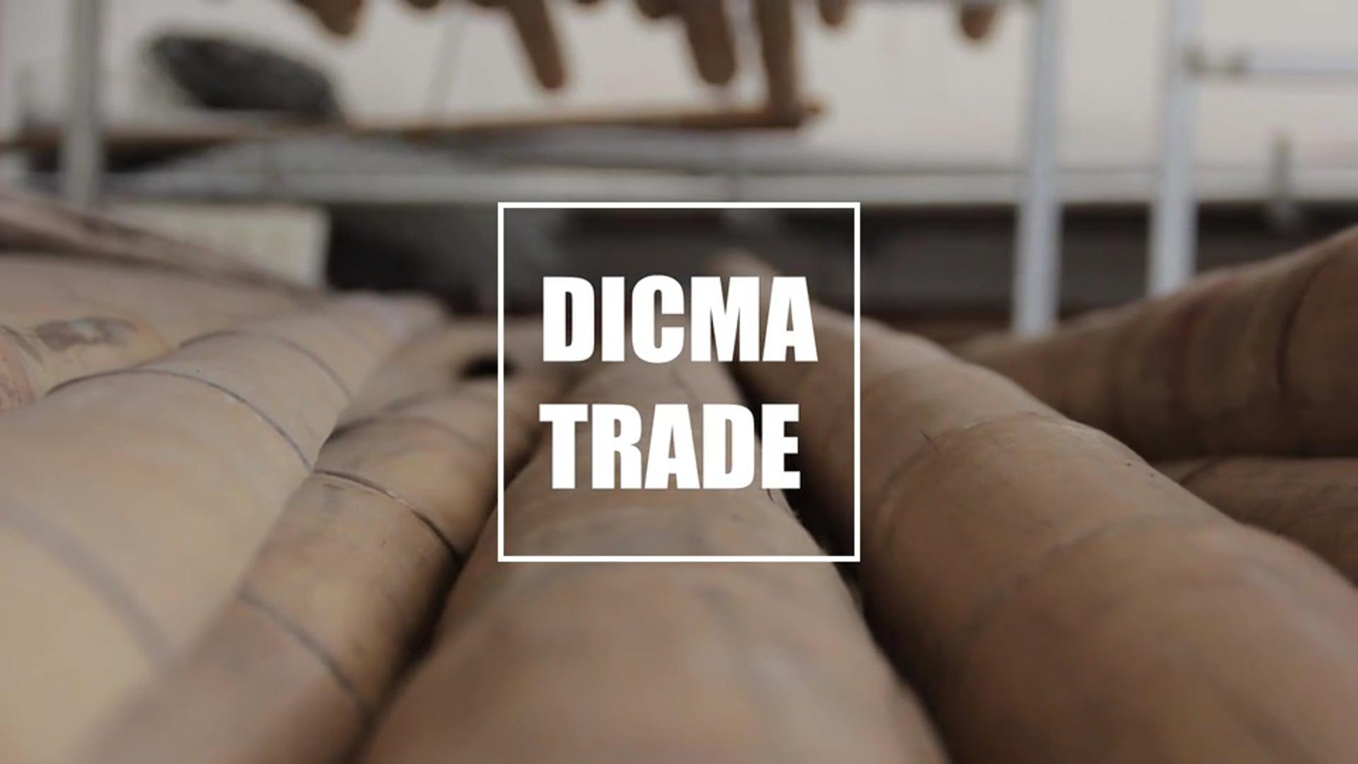 Dicma Trade   Peter Van Lengen   Bio Architecture
