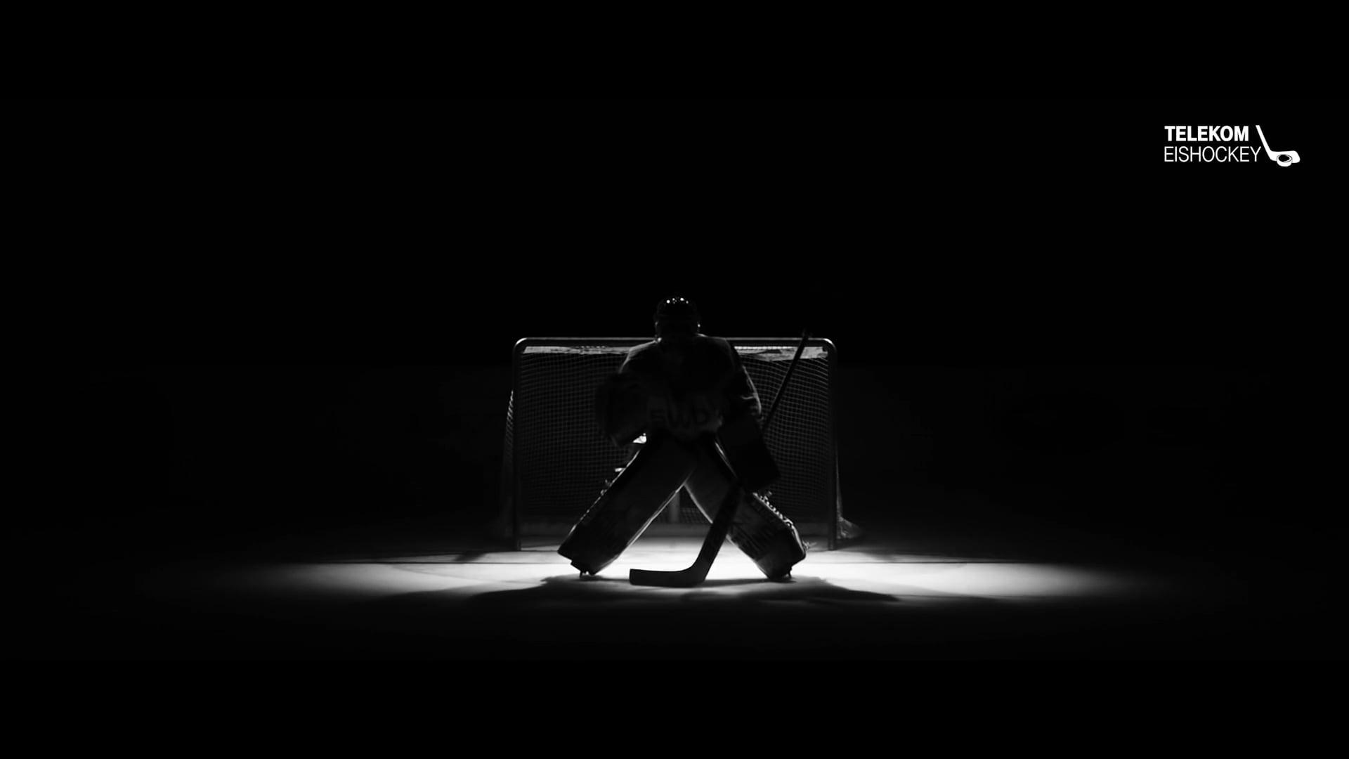 Telekom Eishockey TVC 16/17