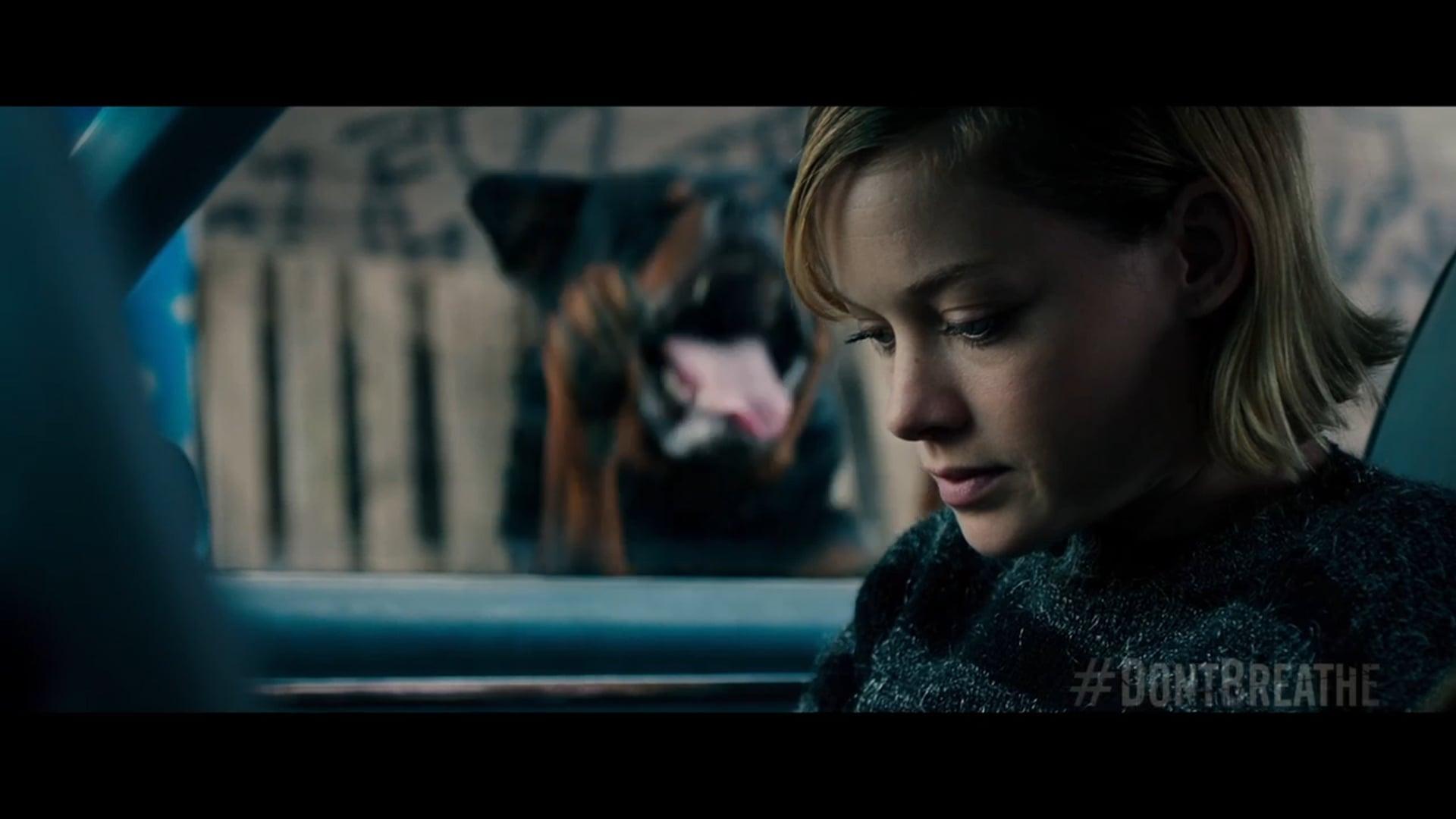 """TV 60 - """"DON'T TALK"""" Clio Entertainment (Key Art) Award Winner - Golden Trailer Award Winner"""