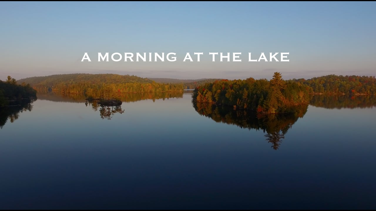 ::A MORNING AT THE LAKE IN 4K