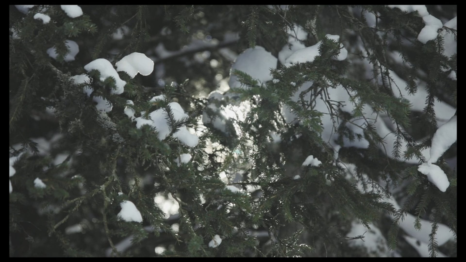 hiver_2016