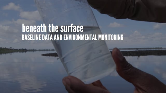 Beneath the Surface: Baseline Data Collection and Environmental Monitoring in Nigeria (ENGLISH)