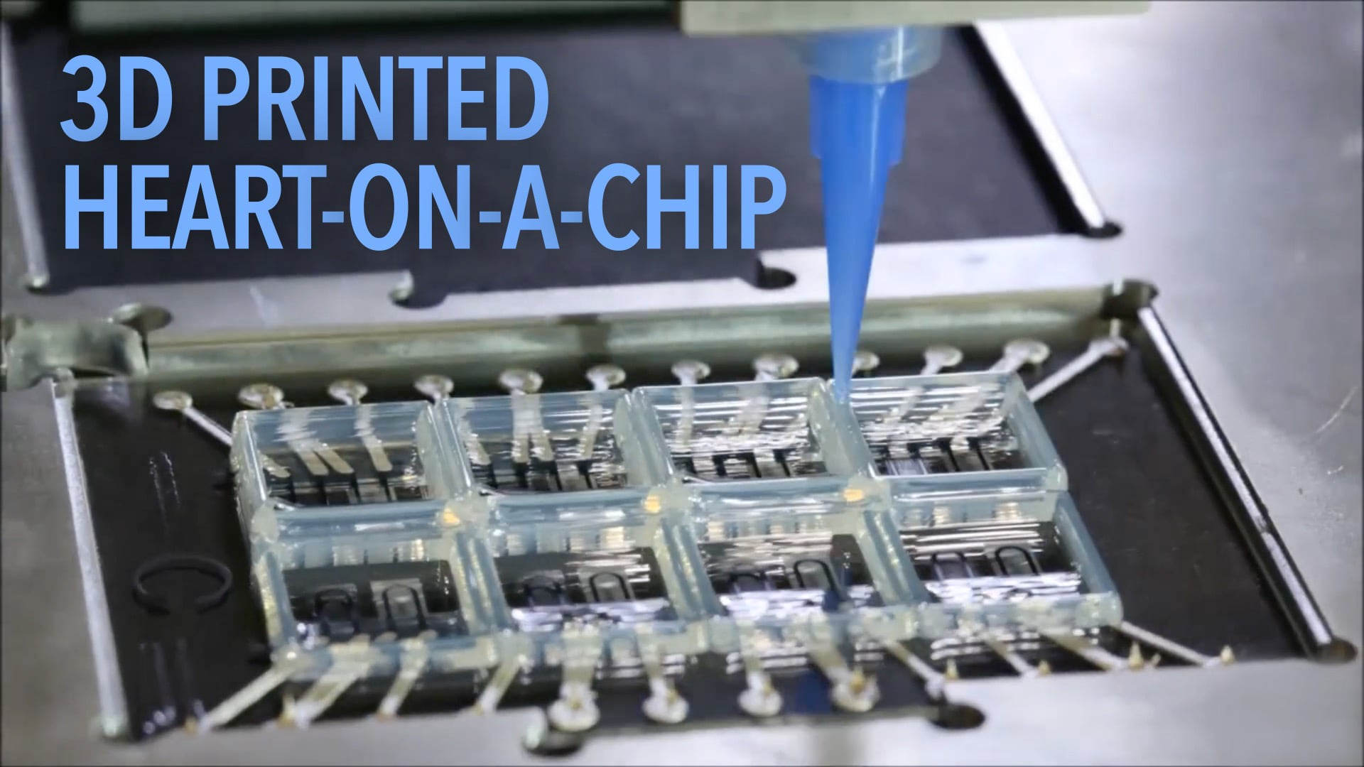 3D Printed Heart-on-a-Chip