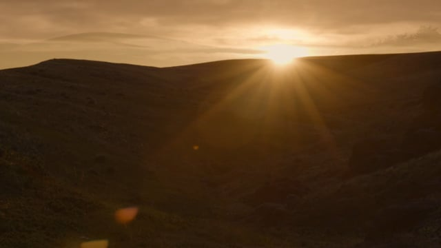 Sun Streaming