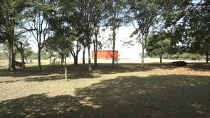 2016-OnArchitecture-Oscar Niemeyer-Parque Iberapuera-FINAL