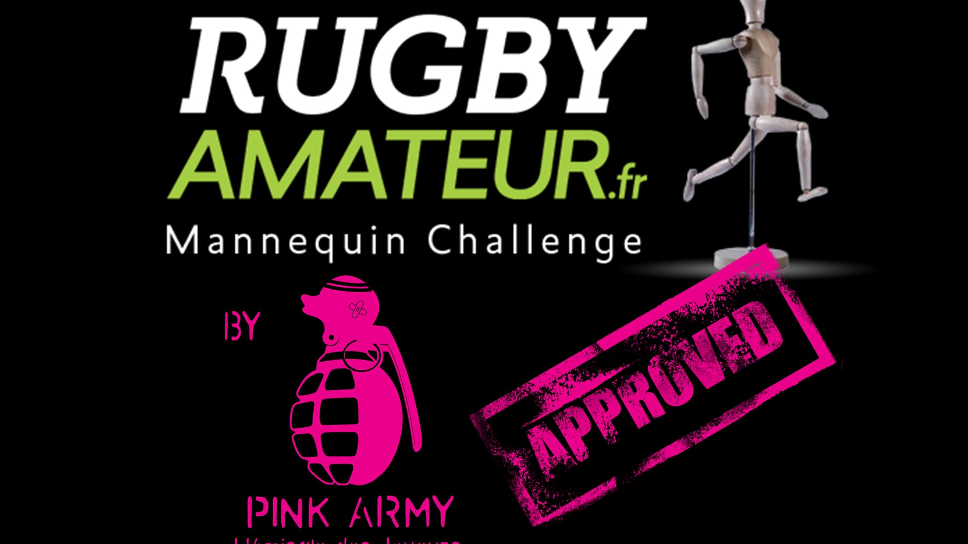 2016 Mannequin Challenge PINK ARMY by TRC XV