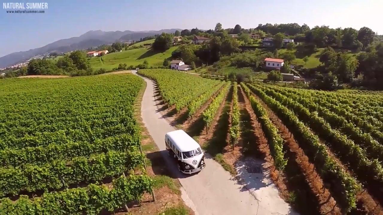 Natural Summer Boda con furgoneta antigua Volkswagen en bodega Hiruzta viñedos