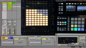 Musoneo Deep Chords Sample Pack