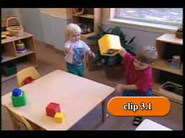 Promoting the Social and Emotional Competence of Infants and Toddlers - 3.1 Biting Video