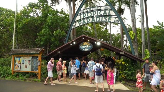 Smiths Family Tropical Garden and Luau