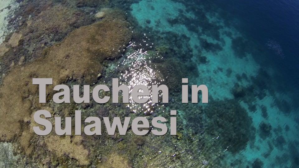 Tauchen in Sulawesi