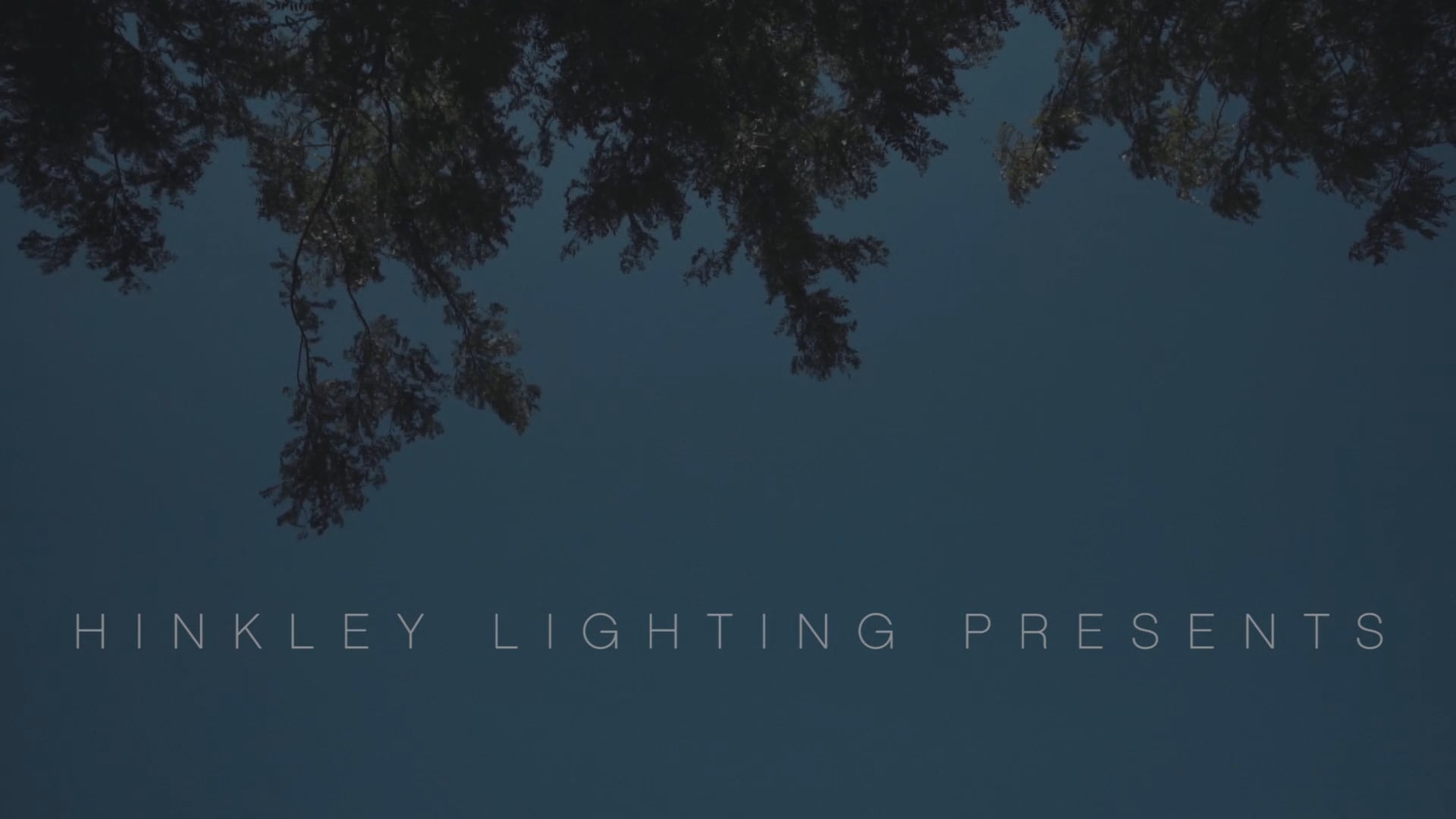 Hinkley Lighting - David Deming