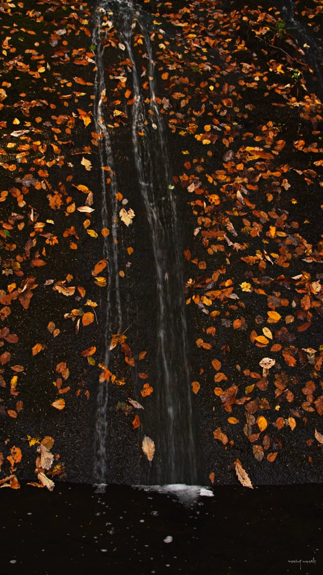 Release 3 - Flow Channel V - The Remnants of Fall