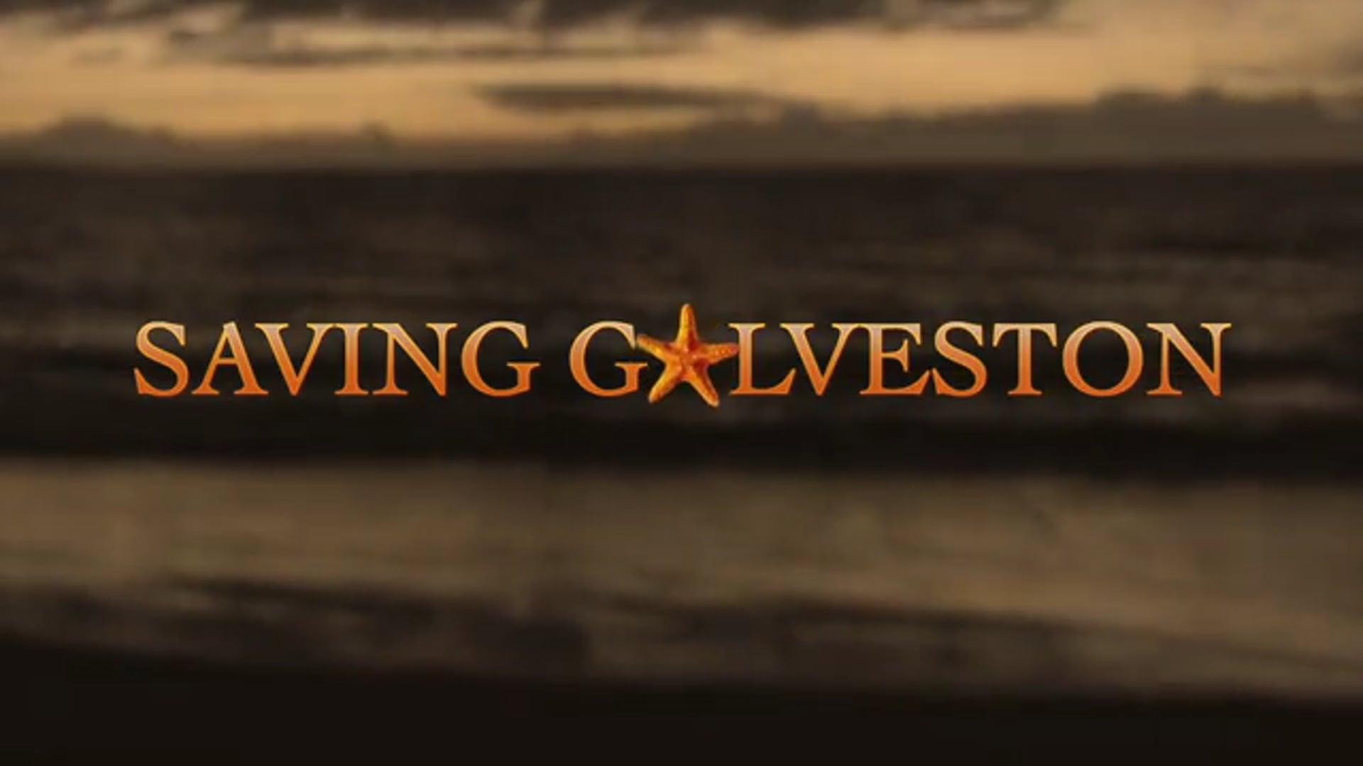 Saving Galveston Pilot