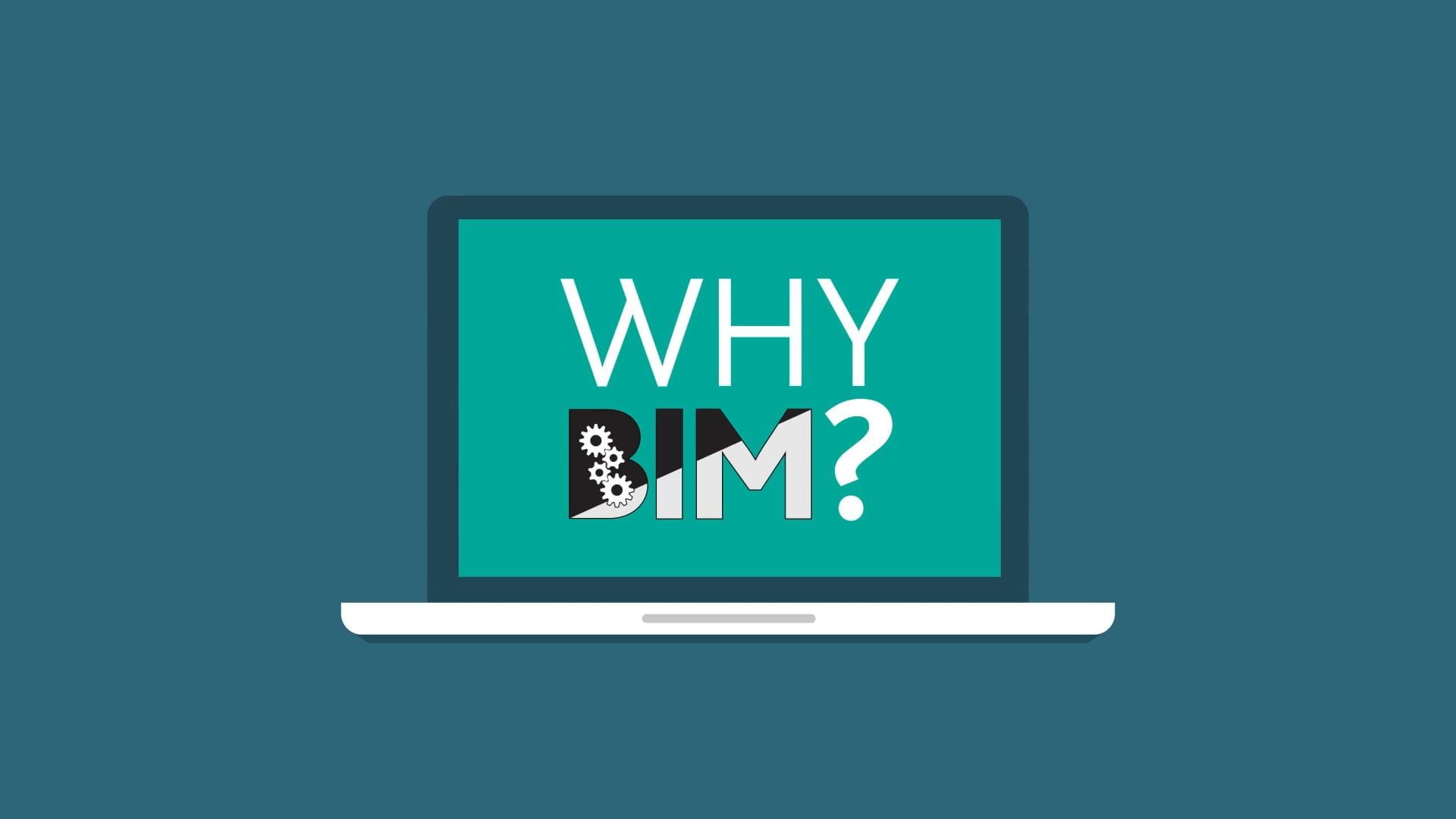 Why BIM?