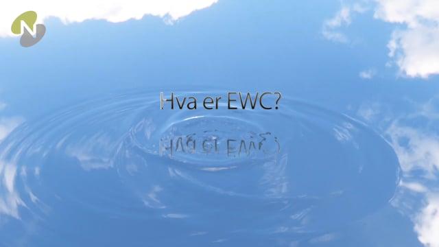 1. Hva er European Works Council - EWC?