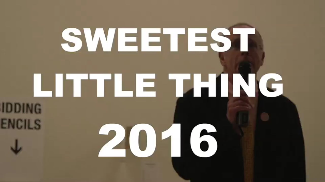 Sweetest Little Thing 2016