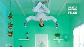 Dairy Queen: Upside-Down Rooms
