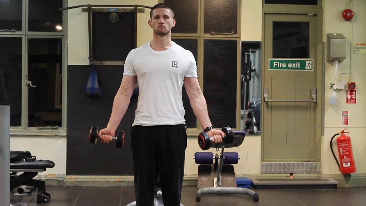 Standing DB biceps curls