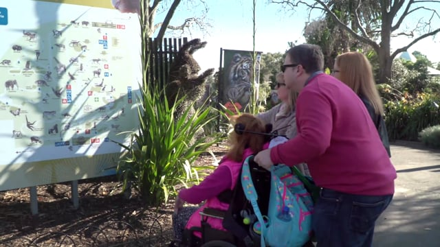 Changing Places Facility at Melbourne Zoo