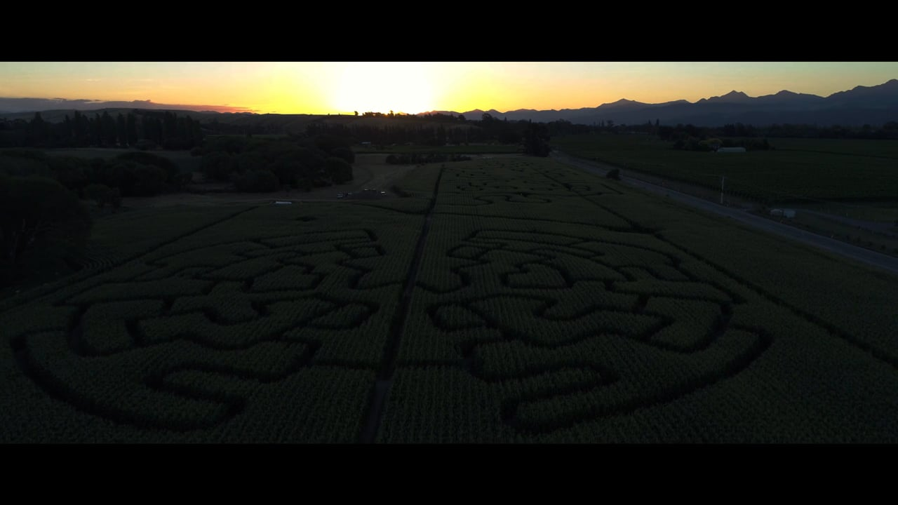 Field of Horrors | Coming Soon