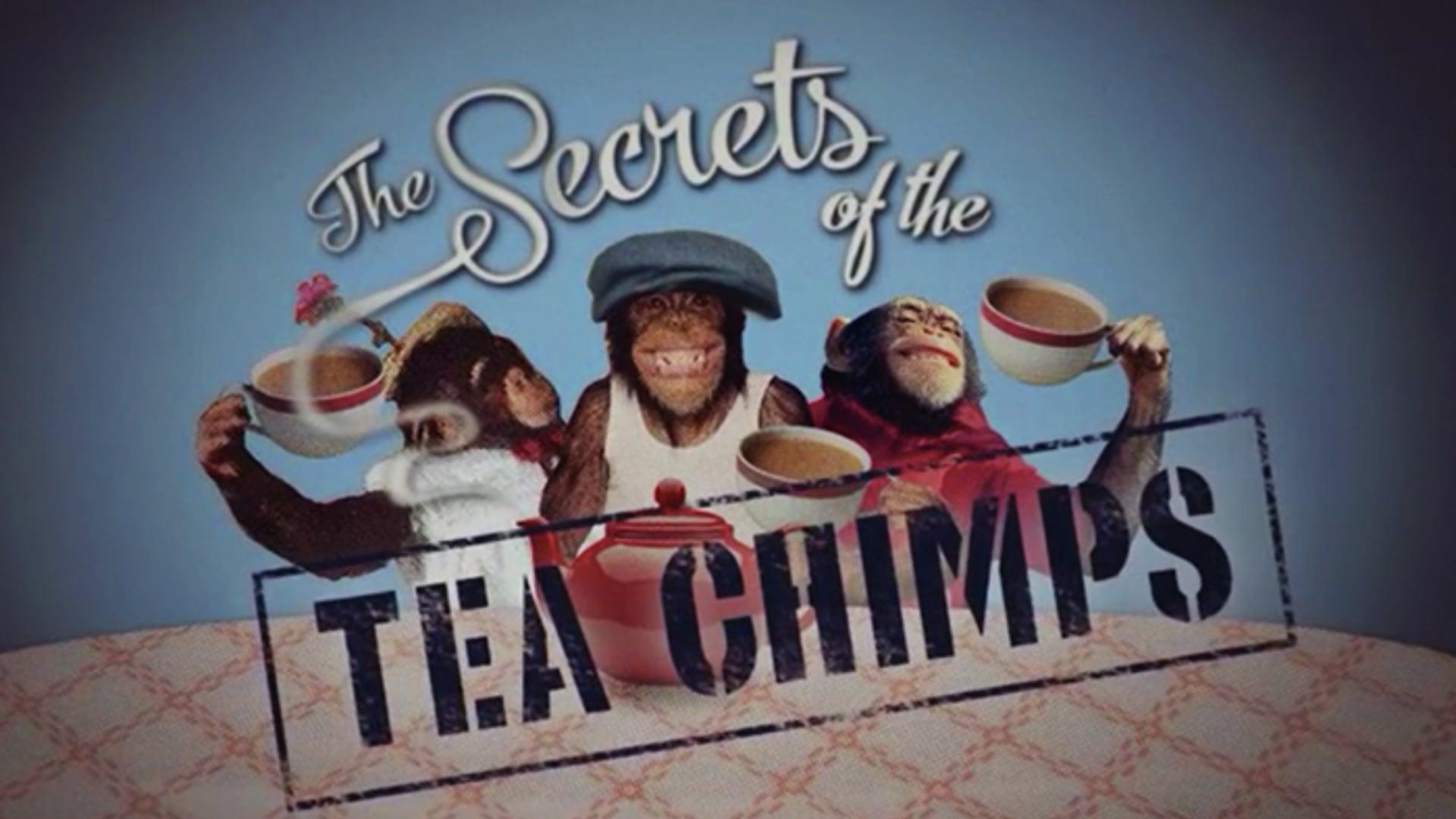 The Secrets of the Tea Chimps, Five