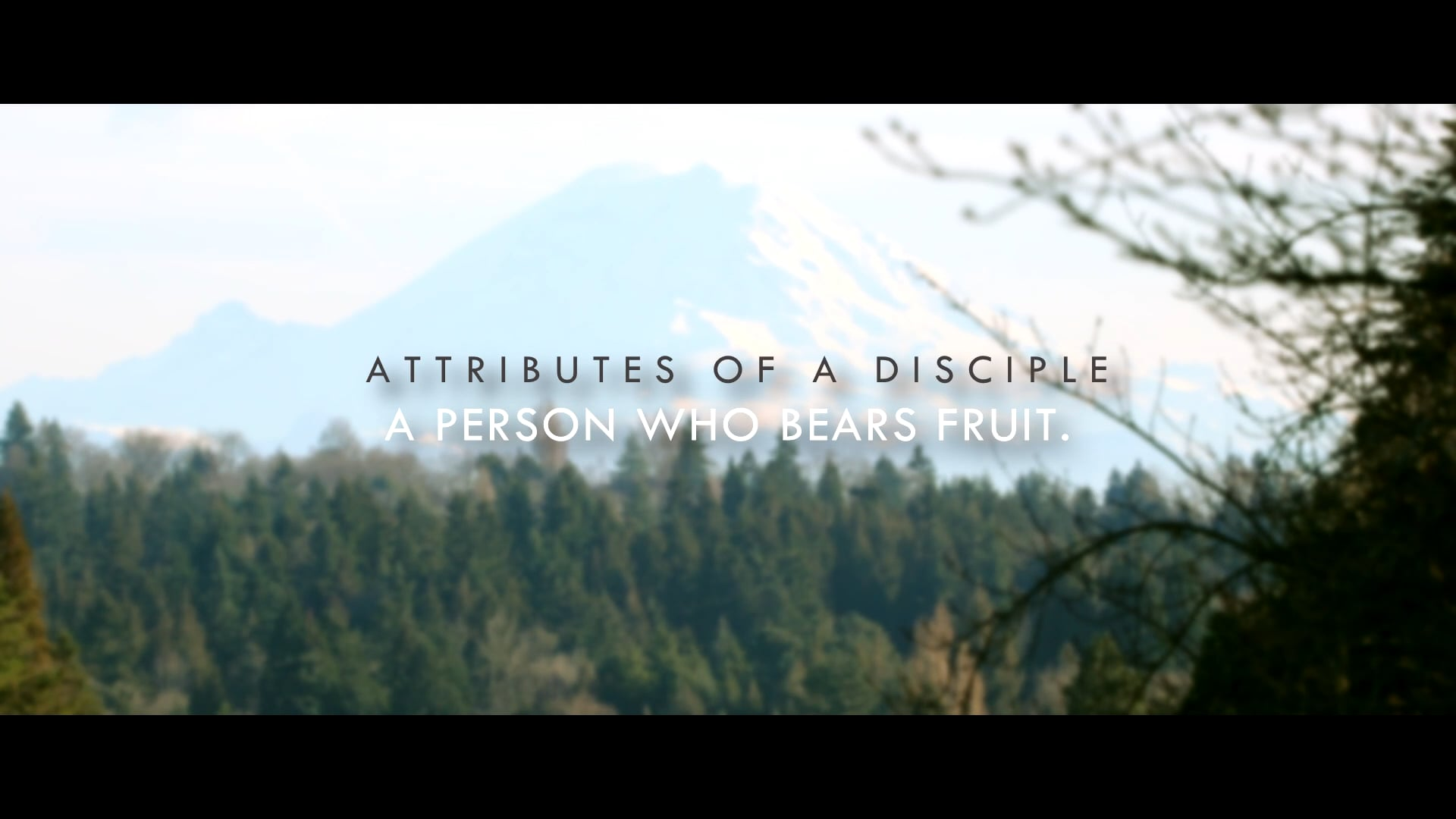 Attributes of a Disciple Part 6 - A person who bears fruit