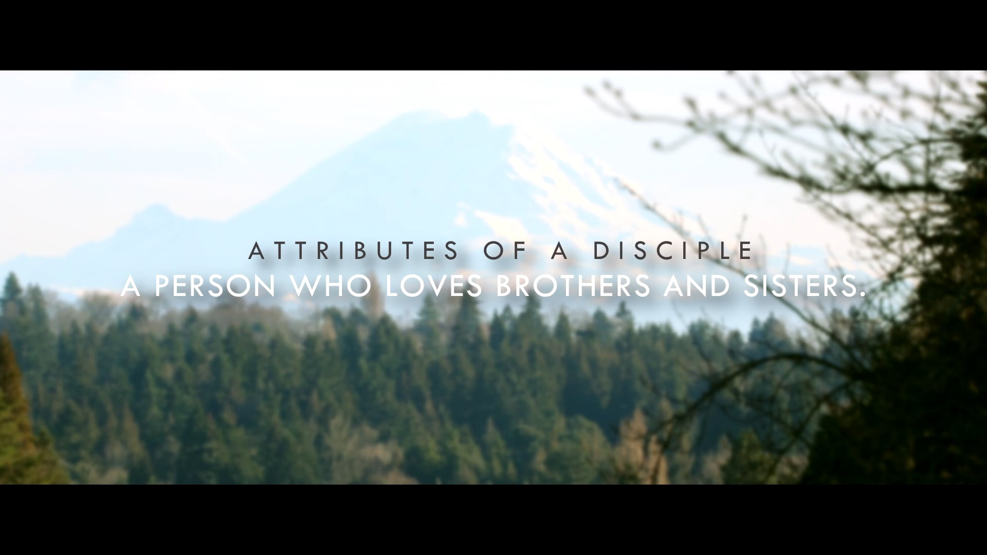 Attributes of a Disciple Part 5 - A person who loves the brothers and sisters.