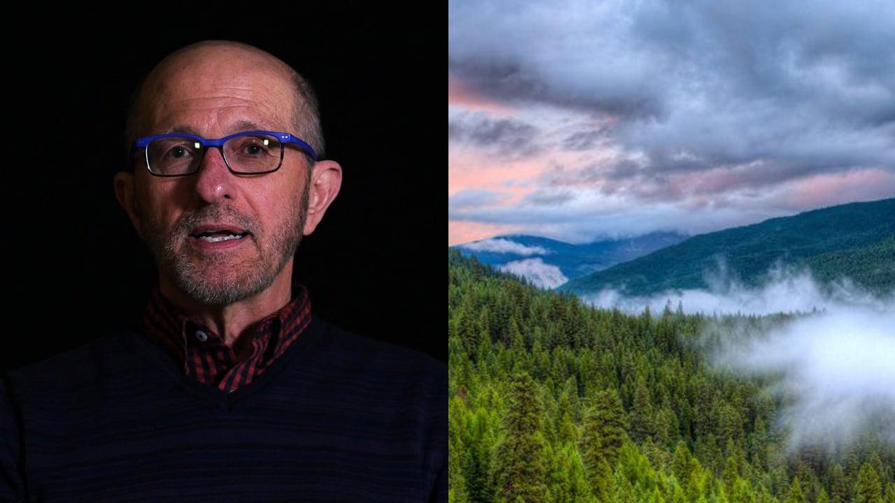 Tim Greyhavens on Collaboration