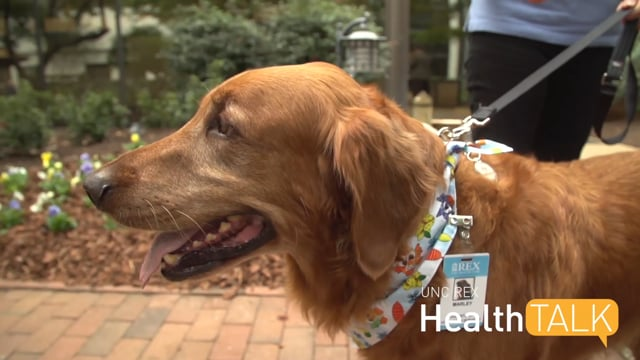 UNC REX Health Talk - Pet Therapy