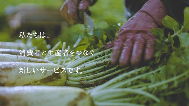 【WEB】Fresh First キックオフ動画