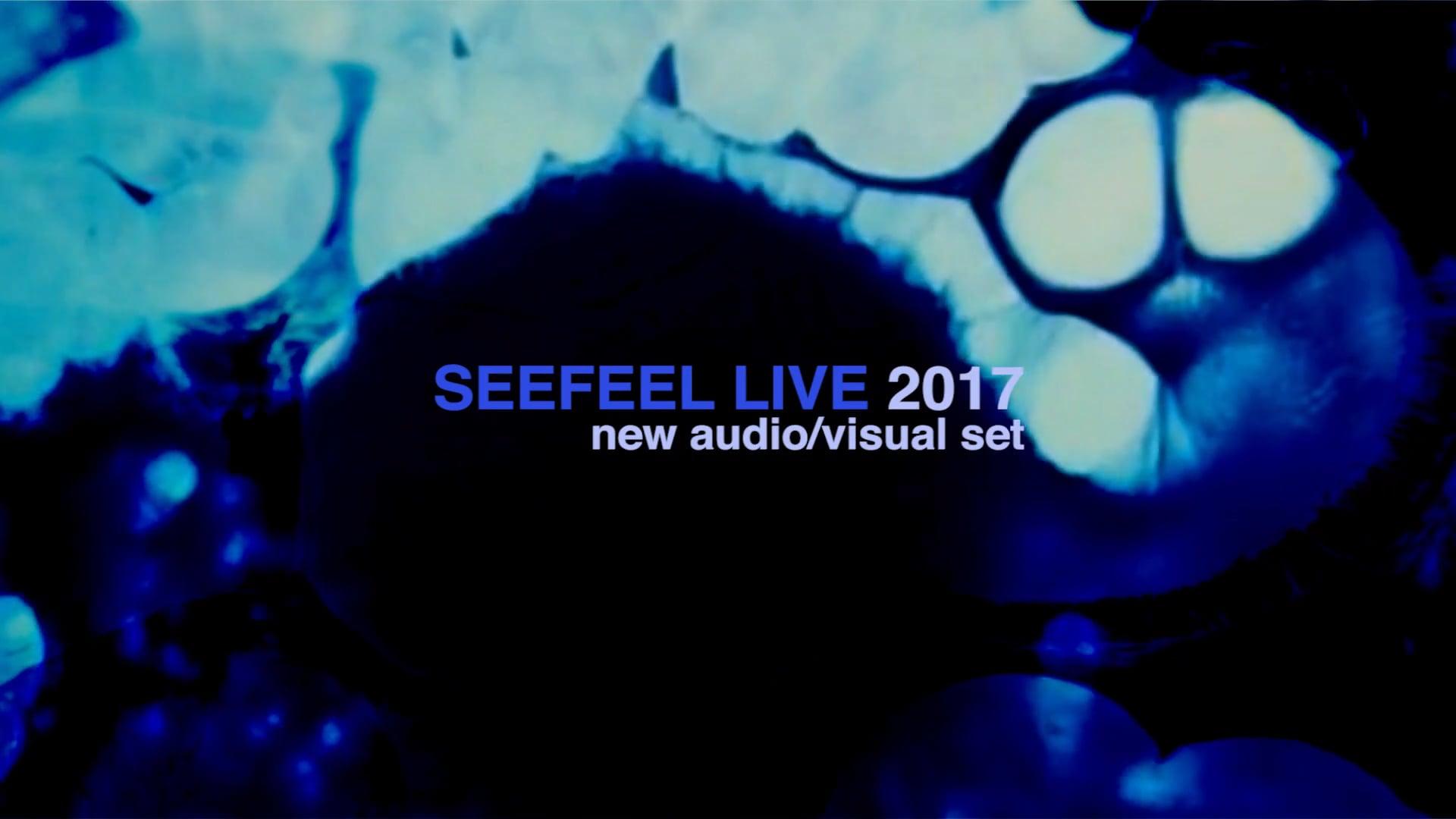 SEEFEEL LIVE 2017