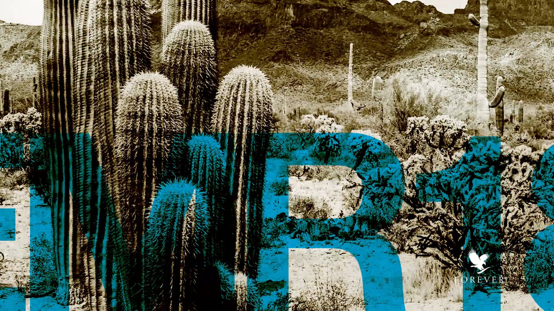 Eagle Manager's Retreat 2018 - Phoenix, Arizona