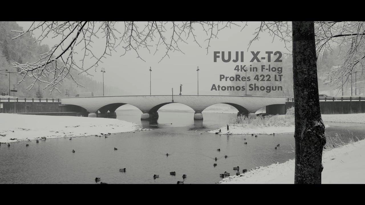 Bridge. Fuji X-T2 test.