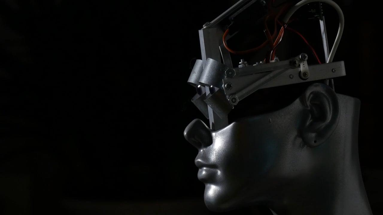 Ale Guzzetti - ROBOTIC PORTRAIT 2011