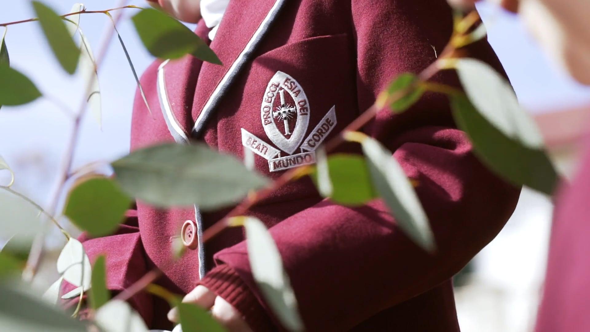 St Michael's Collegiate School