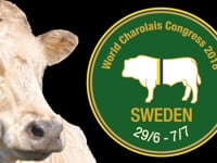 World Charolais Congress 2018