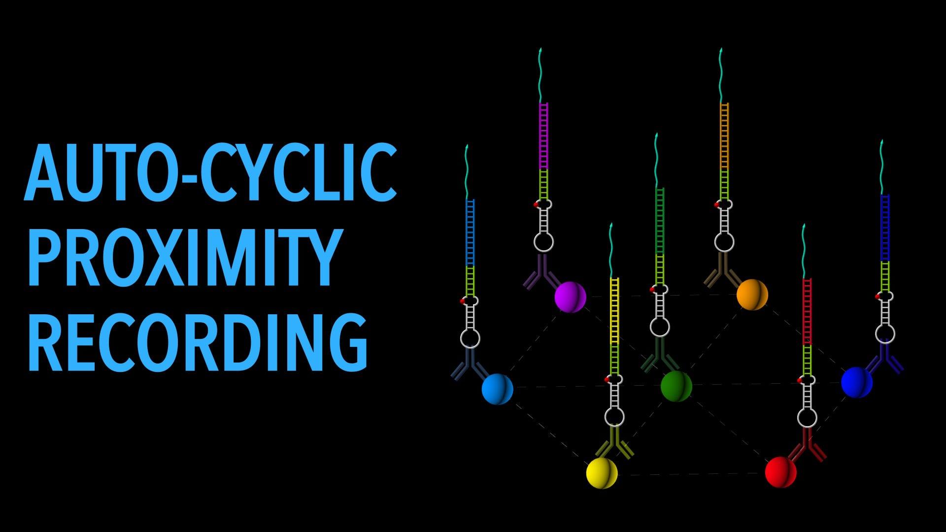 Auto-cyclic Proximity Recording