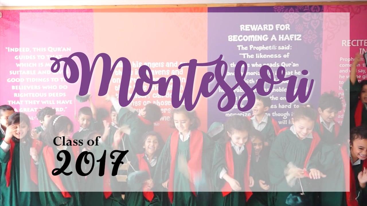 AIS Montessori Class of 2017 (H-11 Campus) Montage