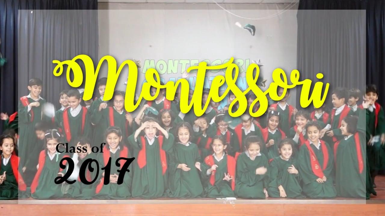 AIS Montessori Class of 2017 (F-8 Campus) Montage