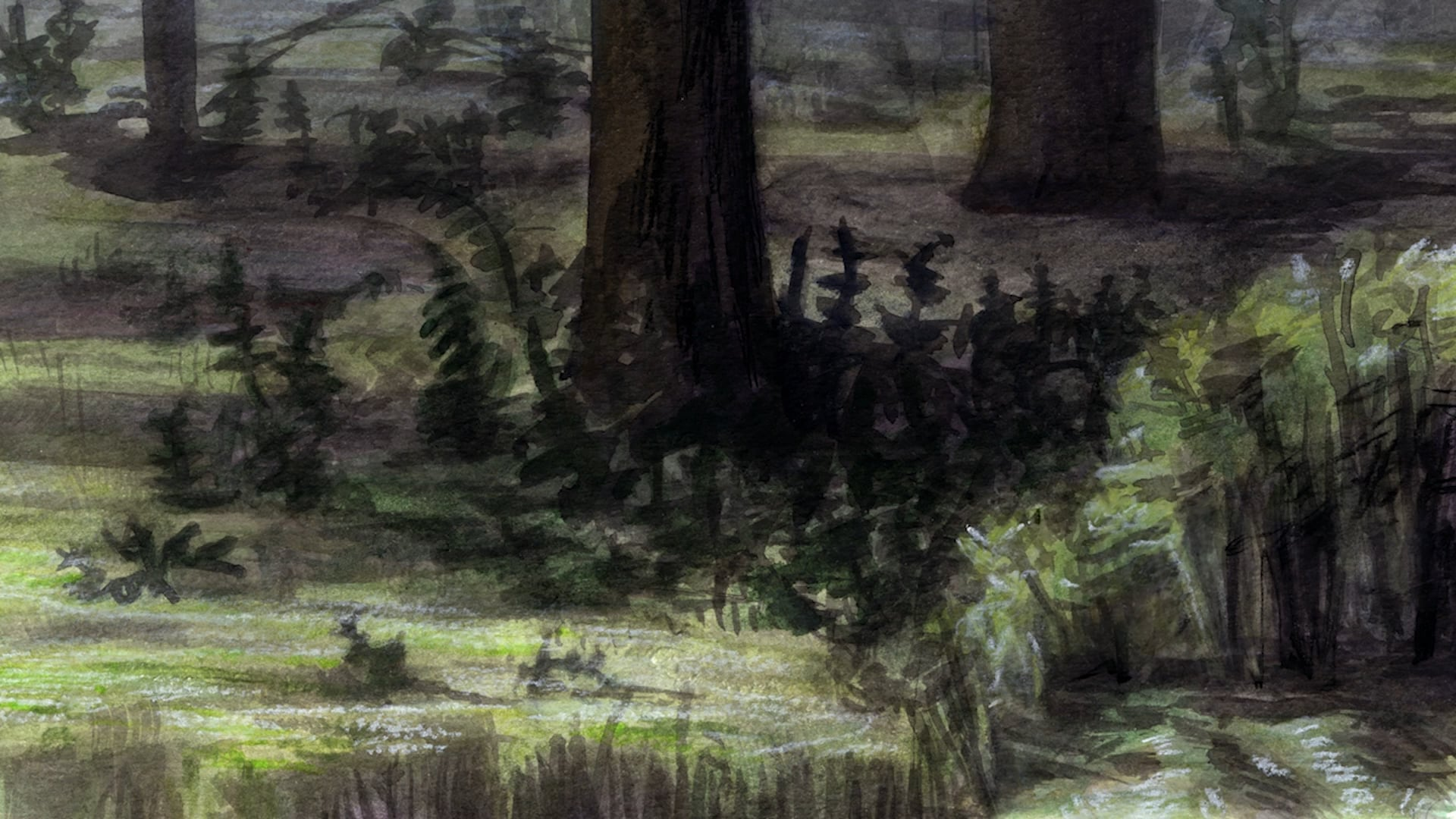Procès Sauvage (Wild Trial)