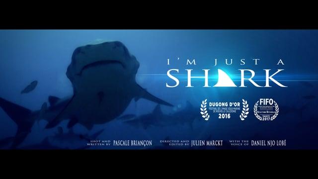 Vidéos - I'm just a shark
