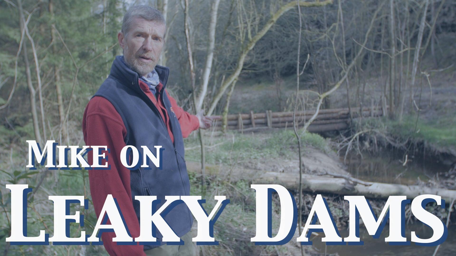 Mike on Leaky Dams