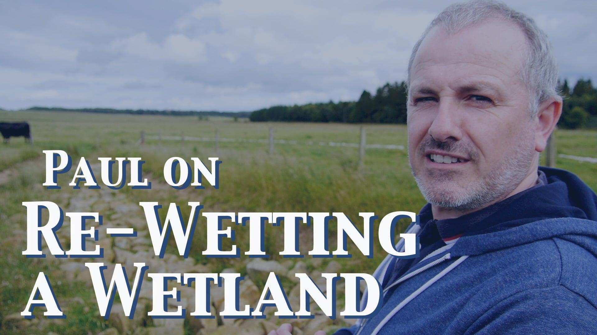 Paul on Wetlands