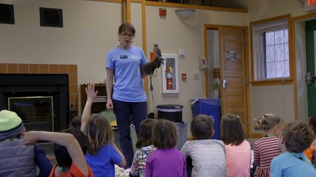Leslie Science & Nature Center - Programs Offered