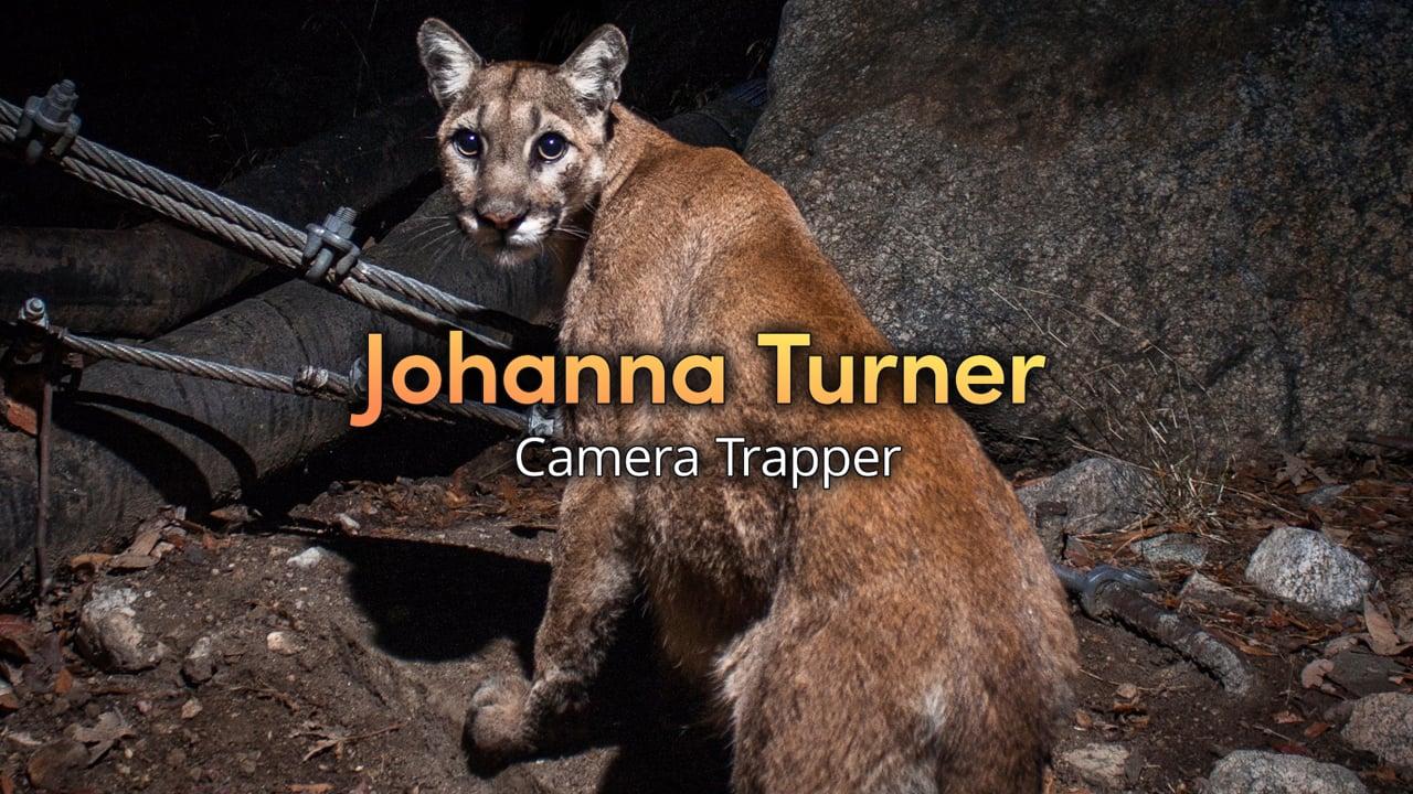 Untethered: My Passion - Johanna Turner