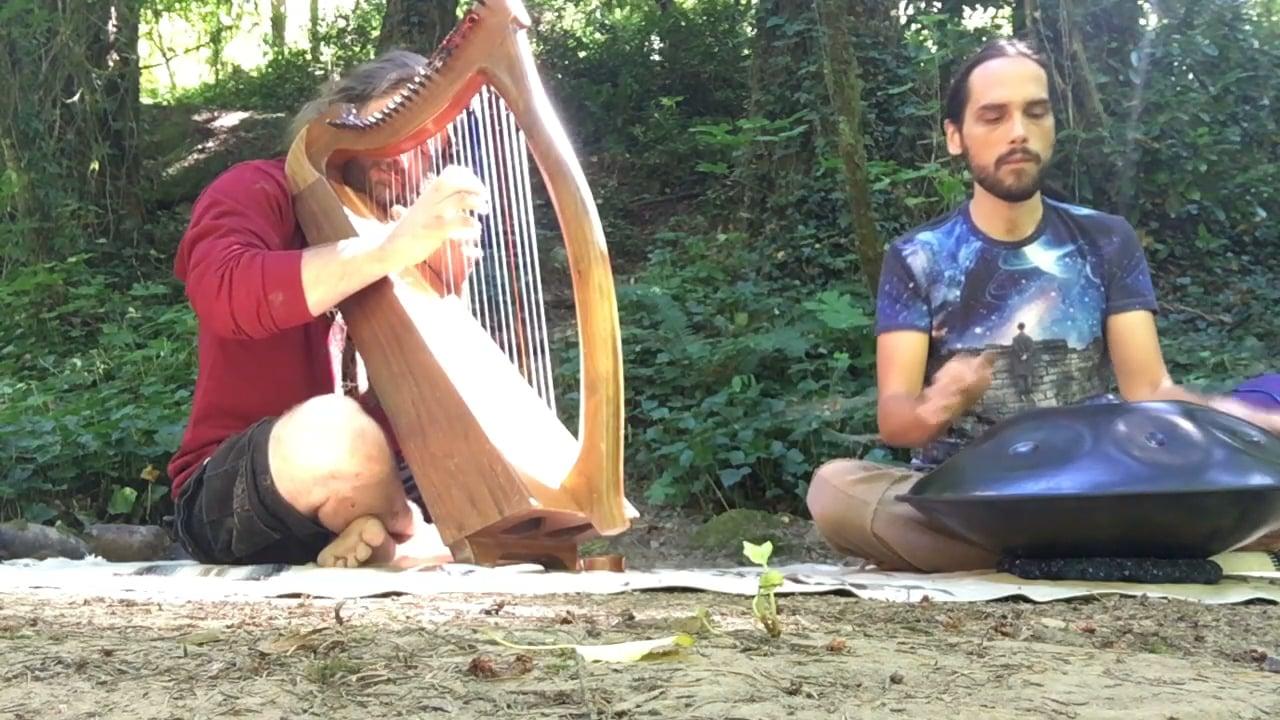 Enrichment - Handpan and Harp Improv