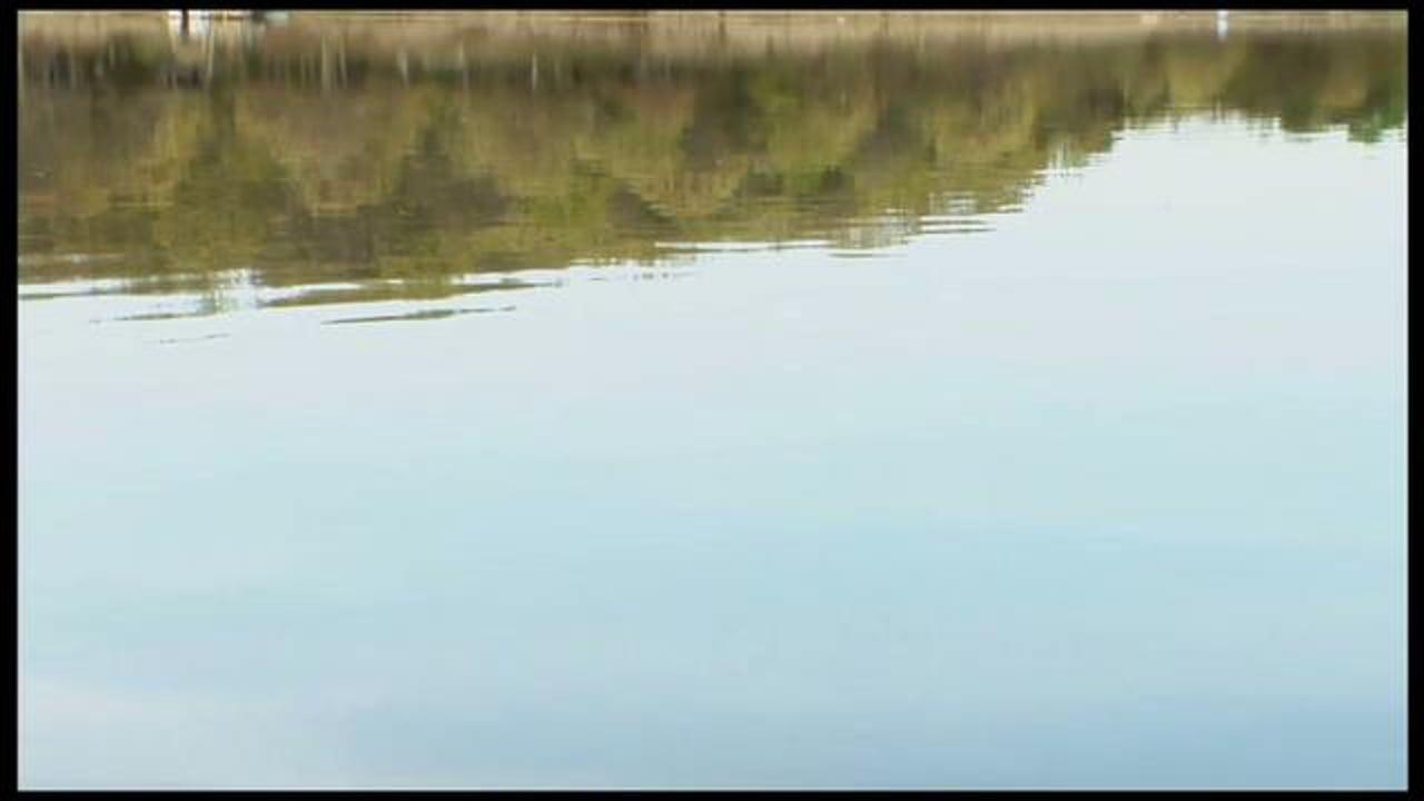 Lake Wonderful Intro