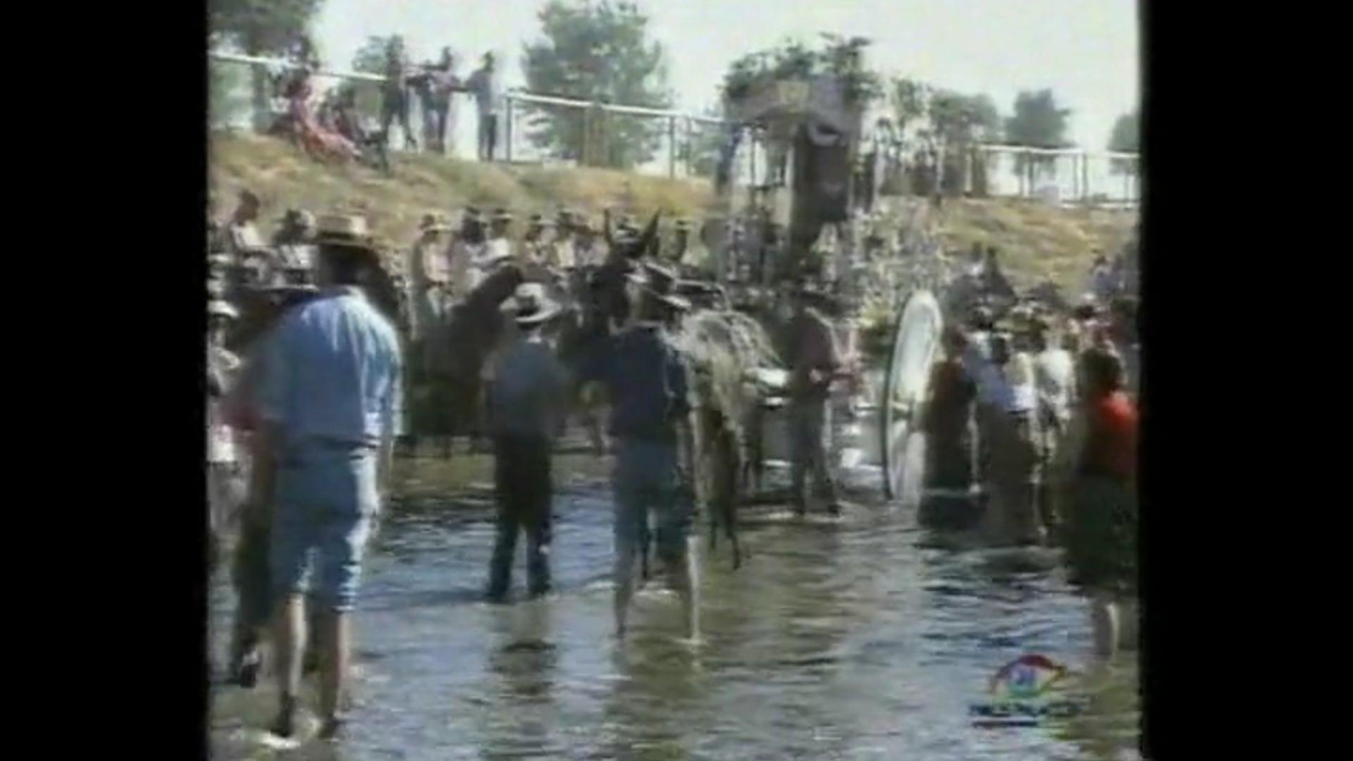 Hermandad del Rocío de Los Palacios 3. Camino de Vuelta 2001